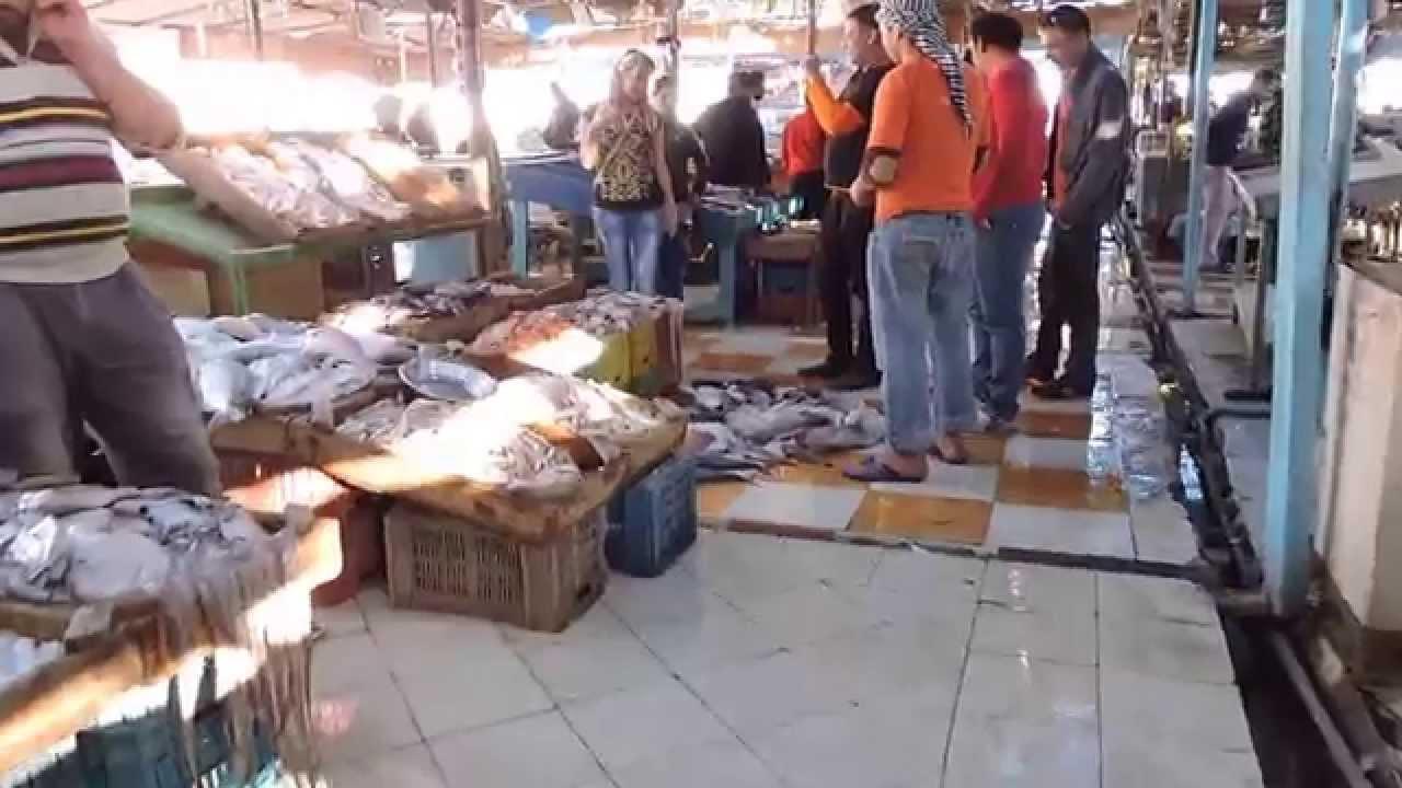 Fish market bazar hurghada egypt youtube for Best fish market nyc