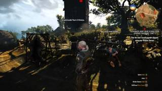 The Witcher 3 vs Fallout 4 - War... war never changes (EVGA event With shadowplay)