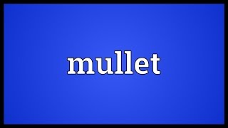 Mullet Meaning