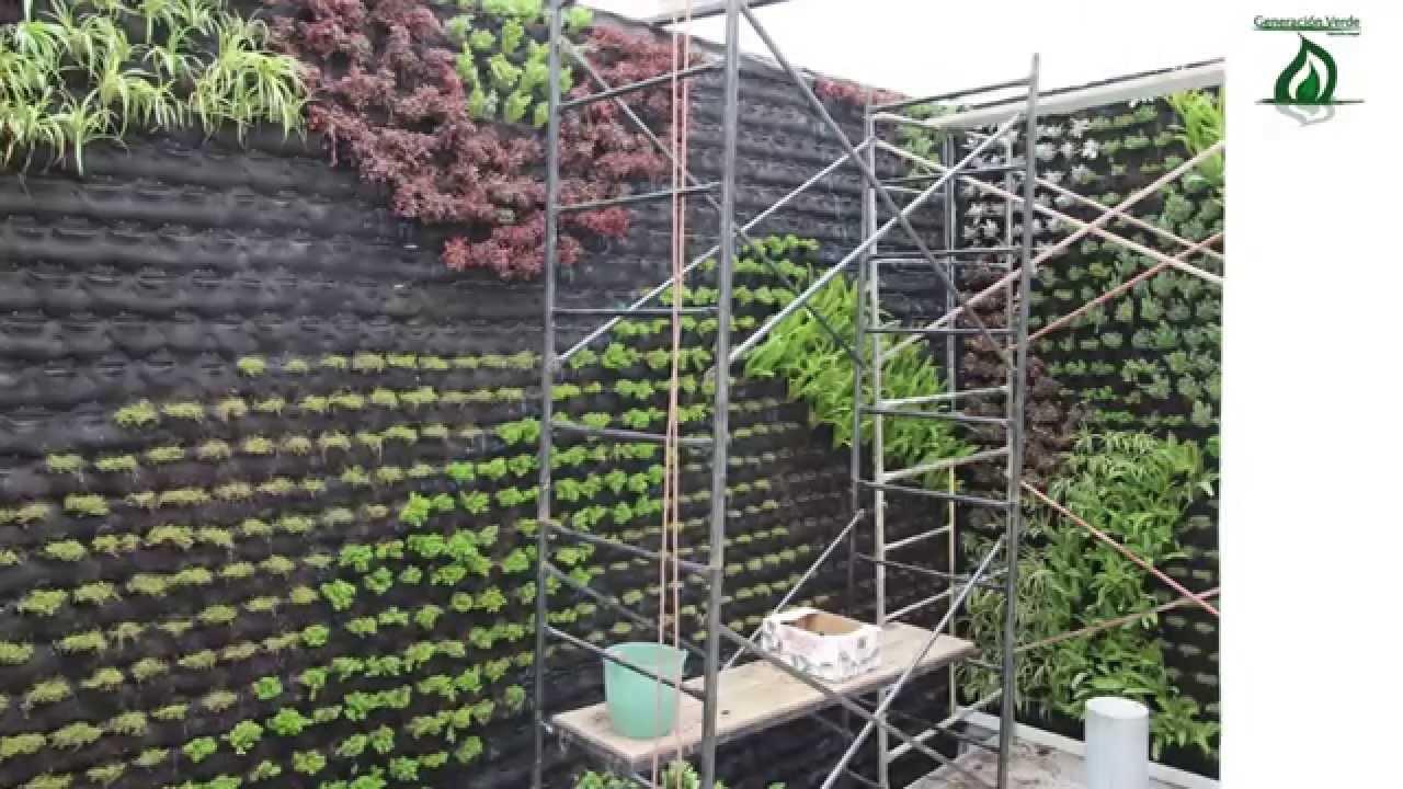 Jardines verticales casa de la mujer iztacalco d f - Jardines de casas ...