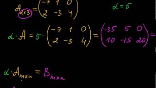 §4 Умножение матрицы на число