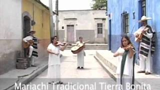 Mariachi, string music, song and trumpet