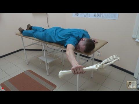 Как убрать напряжение и боль в трапеции. Упражнения для трапеции