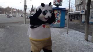 Бешеная панда танцует