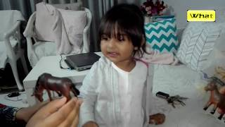Unboxing Pet Animal Toys for Funny Kid Learning