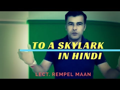 To A Skylark | PB Shelley | Summary and line by line  Analysis in Hindi