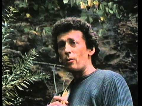 What Waits Below is listed (or ranked) 24 on the list The Best Robert Powell Movies