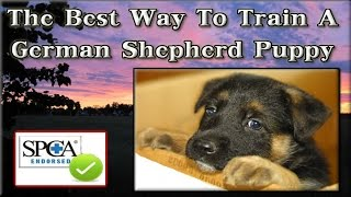 ▶▶ The Best Way To Train A German Shepherd Puppy [guaranteed] How To Train My German Shepherd Puppy