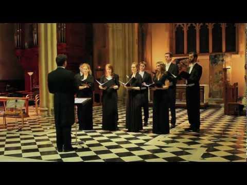 Platinum Consort - A Hymn to the Virgin