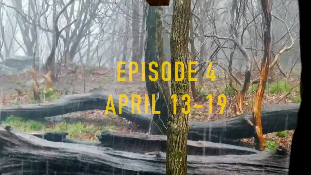 Episode 4 - The Next Step - Appalachian Trail-  The Branch Ministries with Bobby Gray