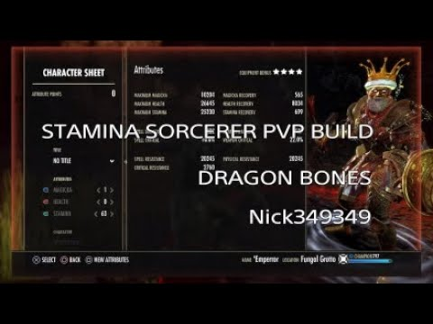 Eso Stamina Sorcerer Build