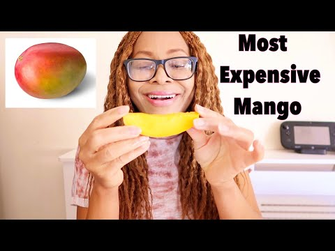 Tasting The Most Expensive Mango In The World | Summer Aku Pidgin Tv