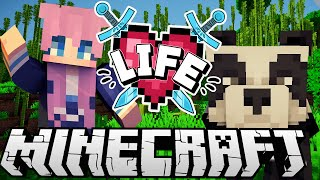 Pandas! | Ep. 5 | Minecraft X Life SMP