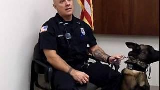 K-9 Police Officer, Career Video from drkit.org
