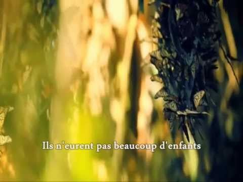Rose - De Ma Fenêtre  (with lyrics)