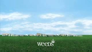 WEEDS   Wacky Tobacky NRBQ Soundtrack