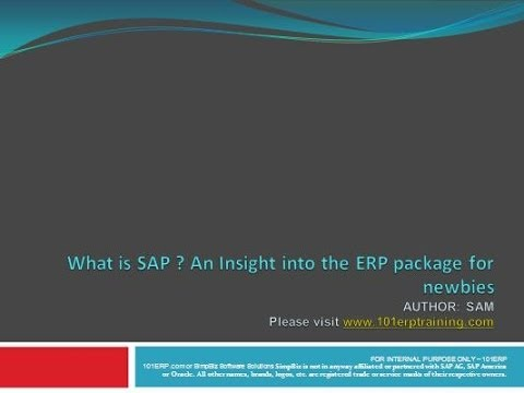 What is SAP - Starting point.