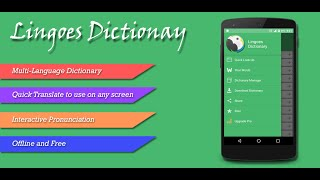lingoes Dictionary Guideline