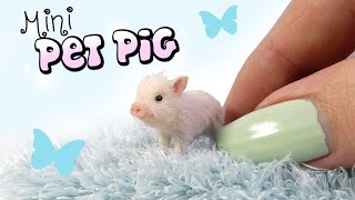 How To Mini Pet Pig Tutorial // DIY Doll Miniature Pig