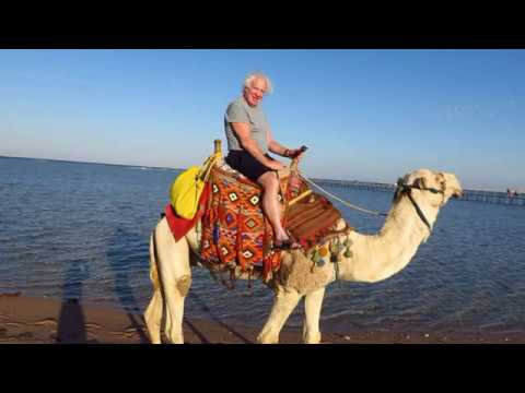 Hotel Royal Albatros-  Sharm El Sheikh 2017