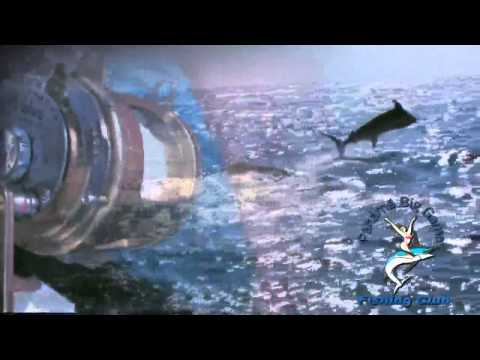 Panama Big Game Sport Fishing Club by Trevor Gowdy Productions