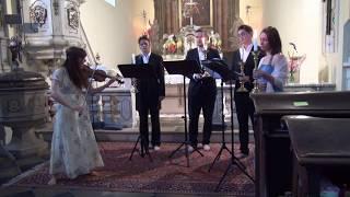 J. S. Bach - Chaconne (Ludmila Pavlová - housle a Quartet Nachtigal)