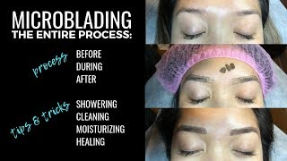 Microblading My Eyebrows Full Process: Before, During, & After