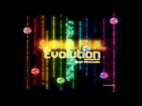 Soulful Evolution February 1st 2013 Soulful House Show HD (50)