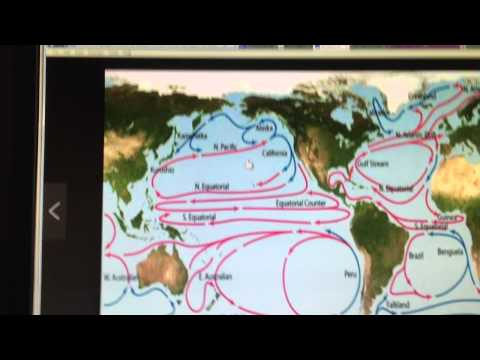 North Pacific Ocean BlowTorch: Part 1/2