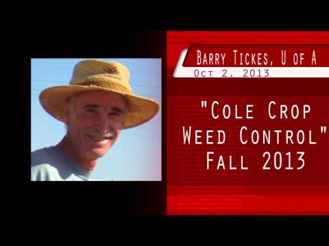 """""""Cole Crops Weed Control""""  Barry Tickes101613"""