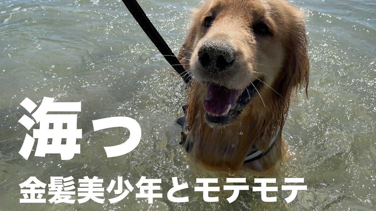 アムロと海に遊びに行ってきました