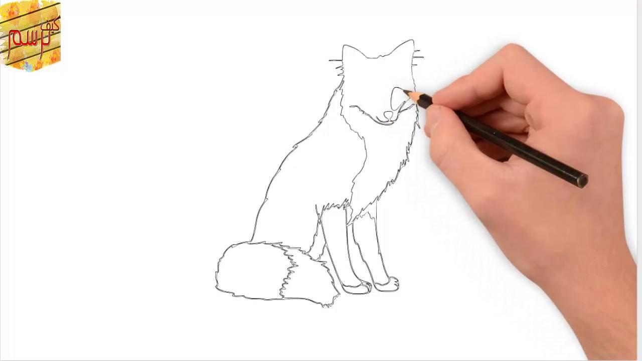كيف ترسم ذئب بسهولة How To Drawwolf Easily Youtube