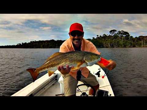 *HD* Ormond/Daytona Beach Florida Inshore Fishing w/ Captain Eric Greenstein