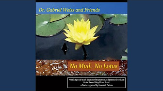 Top Tracks - Dr  Gabriel Weiss - YouTube