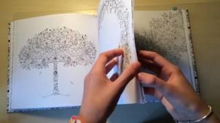 Расскраска-Антистресс. Таинственный сад