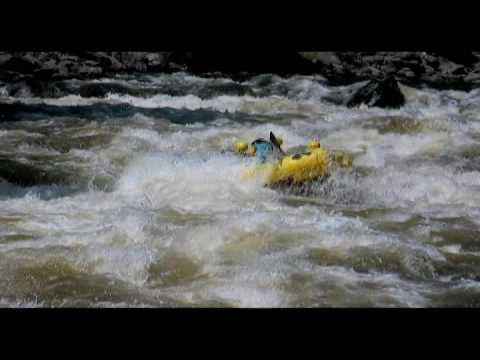 Plunge Half day trip - Best rafting Fort Collins Colorado