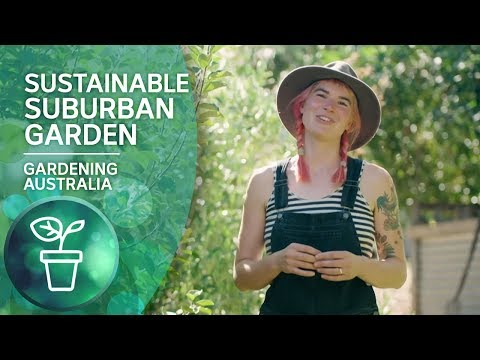 Living sustainably and cultivating almost everything you need on a suburban block