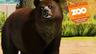 I couldn't find any beets for my exhibit. Subscribe for more Zoo Ty...