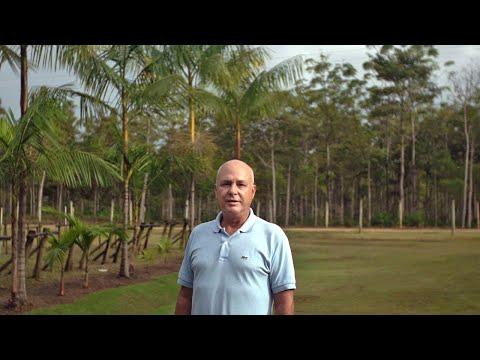 O domesticador de árvores nativas do Brasil - As Caras da Restauração (Bruno Mariani)