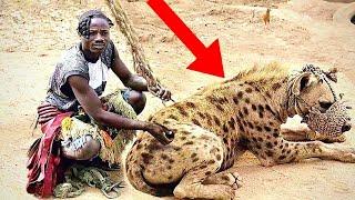 7 حيوانات مخيفة تم ترويضها وتربيتها كحيوانات أليفة .. رقم 1 سيصدمك ..!!