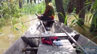 sensasi mancing ikan Piranha monster Amazon