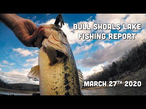 Bull Shoals Lake | Fishing Report | Late March