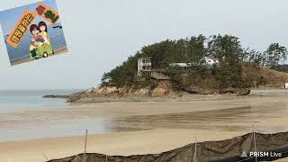 강아지랑/ 태안여행/만리포해수욕장