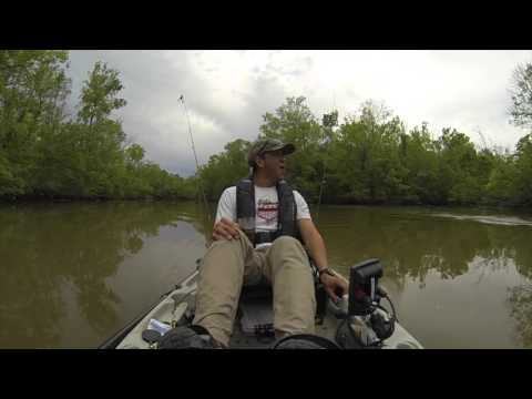 """Kayaker Fishing With His Son Get Surprise Of A Lifetime: """"That's A Big-A** Gator Buddy"""""""
