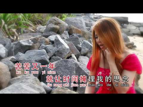 Lei Man Tian Liang Yu Jing [ 梁钰晶 泪满天 ] KTV Lyrics HD