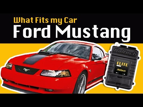 Ford Mustang - What Fits My Car? - 동영상