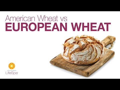 Can You Only Digest European Bread? American vs  European Wheat   John  Douillard's LifeSpa