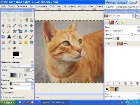 Онлайн фотошоп Аватан для редактирования фото Grozza