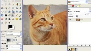 3.7.3. Редактирование фотографий и изображений