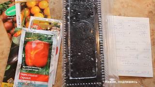 Посев на рассаду и пикировка томатов, перцев, баклажан